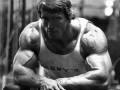 نصائح أساسية للمبتدئين لإكتساب كتلة عضلية