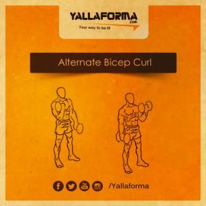Alternate Bicep Curl