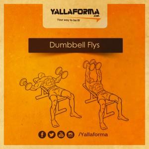 Dumbbell Flys