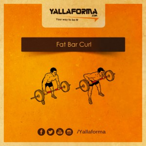 Fat Bar Curl