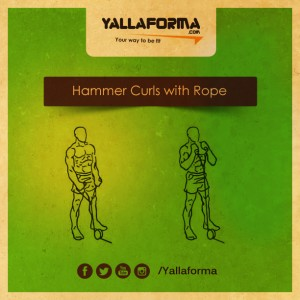Hammer Curls with Rope