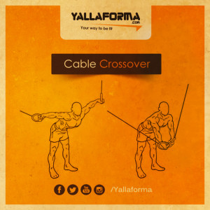 Cable Crossover