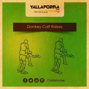 Donkey Calf Raises استغفر الله العظيم