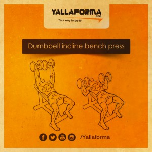Dumbbell incline bench press