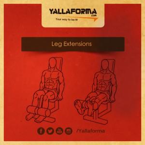 Leg Extensions