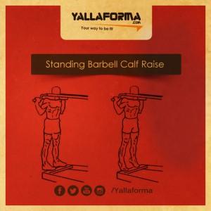Standing Calf Raises