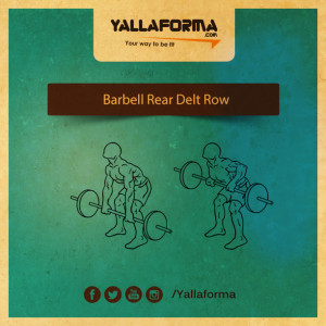barbell-rear-delt-row