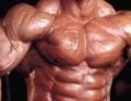 خطة الحصول على عضلات جامدة خلال سنة بس – للوحوش!