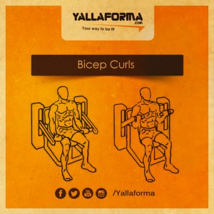 Bicep Curls Machine