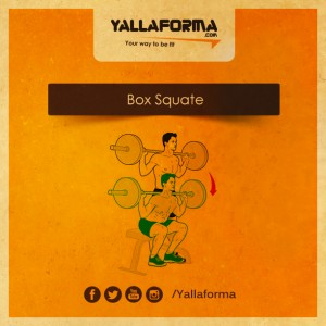 Box Squate