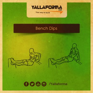 Bench Dips