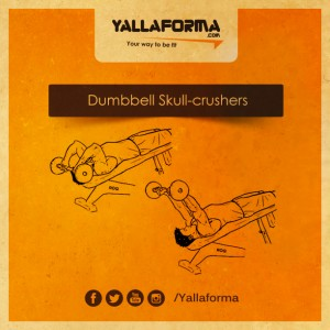 Dumbbell-Skull-crushers