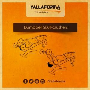 Dumbbell-Skull-crushers
