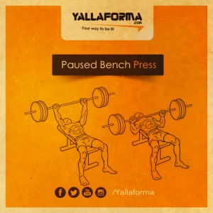 Paused Bench Press