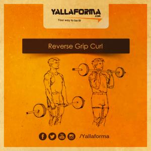 Reverse-Grip-Curl