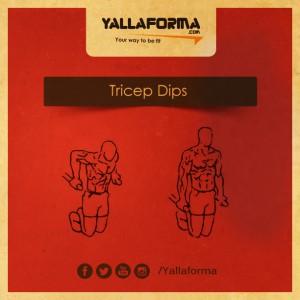 Tricep Dips