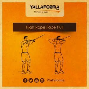 High Rope Face Pull