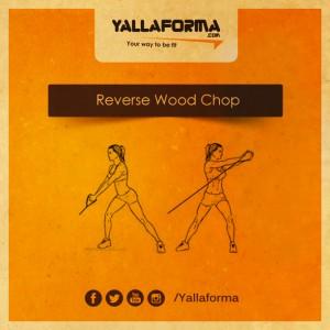 reverse wood chop