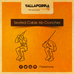 Seated Cable Ab Crunches