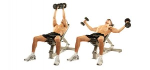 High Incline Dumbbell Fly