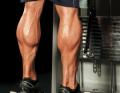 6 طرق سهلة لتكبير عضلات السمانة العنيدة